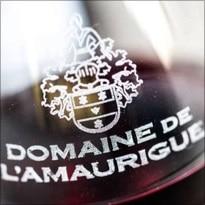 Logo van wijnboerderij Domaine de l'Amaurique